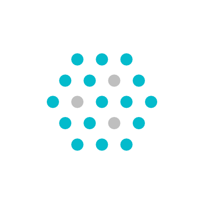 Nami Crypto Logo