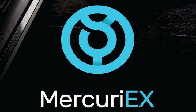 MercuriEx logo