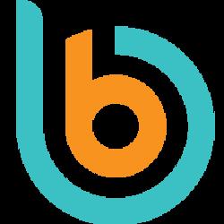 BitOnBay Logo