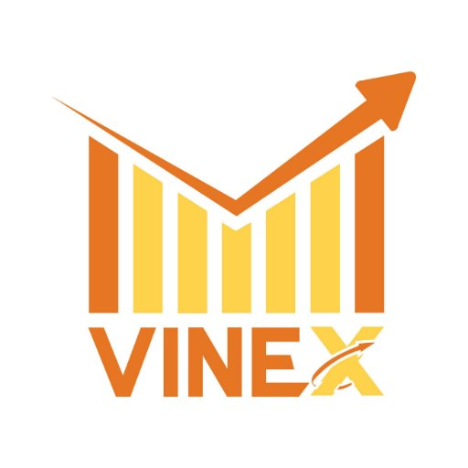 Vinex Network Logo