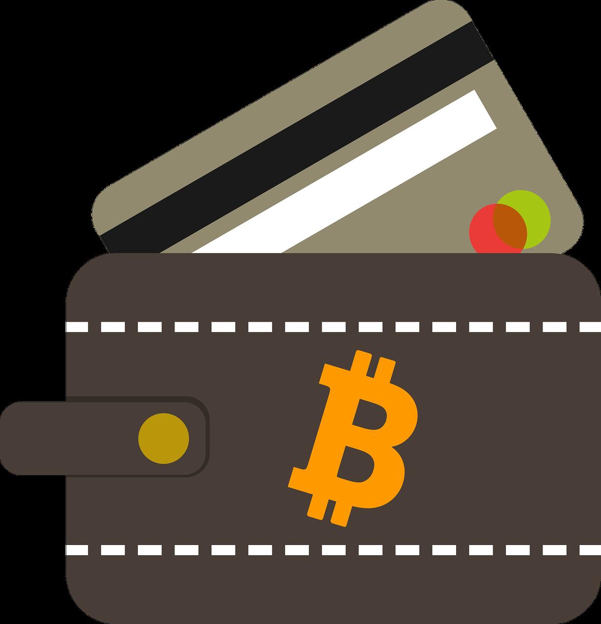 Bitcoin Wallet Not Digital Cash Storage