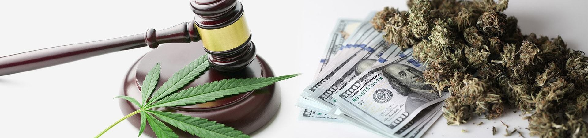 Can Financial Institutions Operate with CBD Companies