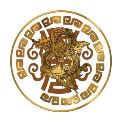 Dragon Coins logo