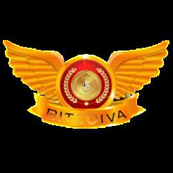 Bitcoiva Logo