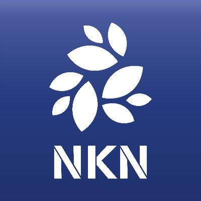 NKN Token logo