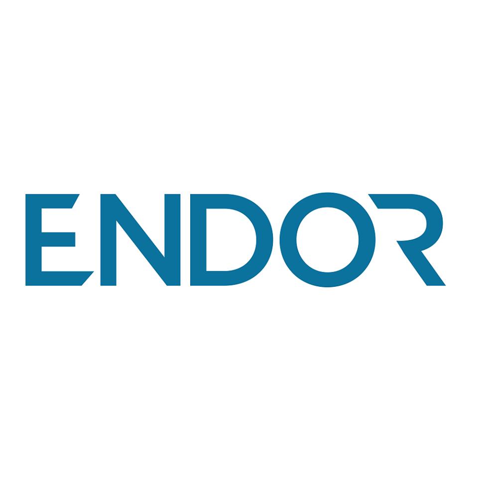 Endor Protocol Token logo